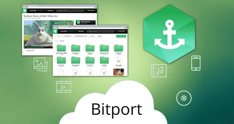 Bitport VPN alternative